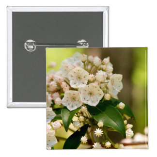 Mountain Laurel in bloom 2 Inch Square Button