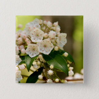 Mountain Laurel in bloom Button