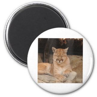 Mountain Lion 2 Inch Round Magnet