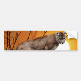 Mountain lion at sunset bumper sticker
