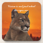 Mountain lion at sunset drink coaster