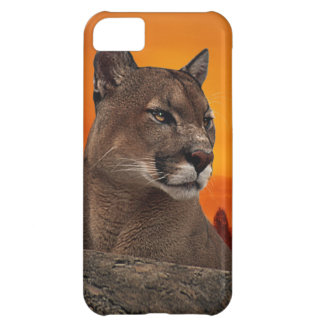 Mountain lion at sunset iPhone 5C cover