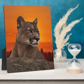 Mountain lion at sunset plaque