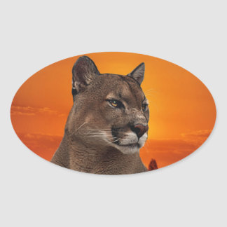 Mountain lion at sunset stickers
