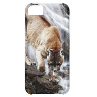 Mountain lion at the waterfall cover for iPhone 5C