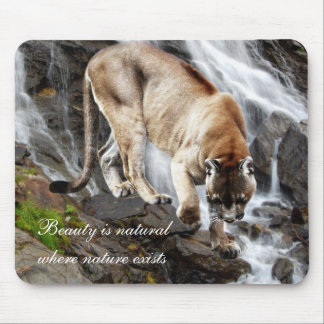 Mountain lion at the waterfall mouse pad