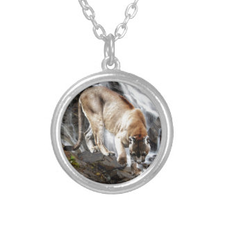 Mountain lion at the waterfall pendant