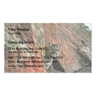 Mountain Lion Business Card