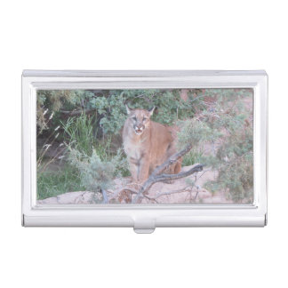 Mountain Lion Case For Business Cards