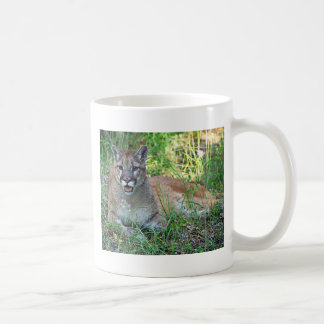 Mountain Lion Complaining Coffee Mugs