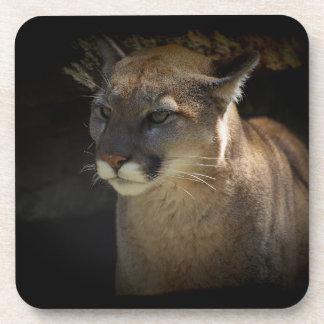 MOUNTAIN LION Cougar Big Cat Wildlife Coaster