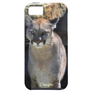 Mountain Lion Cougar Wildlife Photo iPhone 5 Case