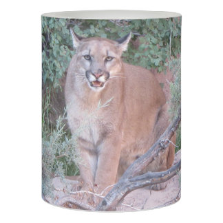 Mountain Lion Flameless Candle