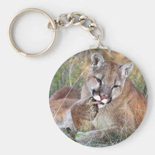 Mountain Lion - Hmmm Keychain