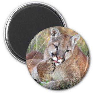 Mountain Lion - Hmmm Fridge Magnet