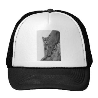 Mountain Lion in Black and white Trucker Hat