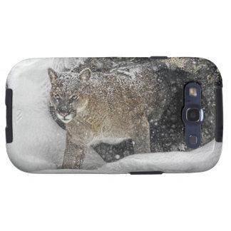 Mountain Lion in Snow Samsung Galaxy SIII Case