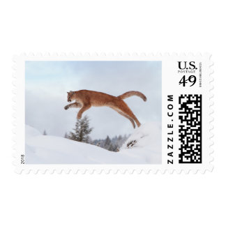 Mountain Lion Leaping in the Snow Postage