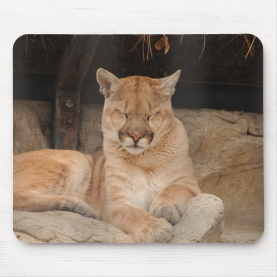 Mountain Lion Mouse Pad