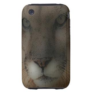 'Mountain Lion on the Hunt' iPhone 3 Tough Cover