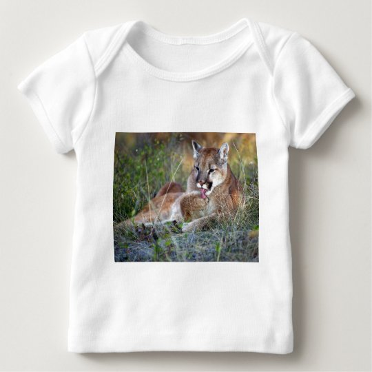 Mountain Lion Preening Baby T-Shirt