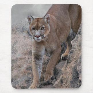 Mountain lion rock climbing mouse pad
