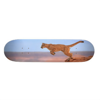 Mountain Lion Skateboard