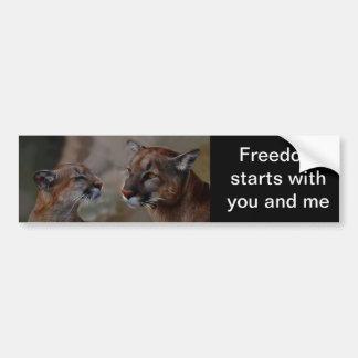 Mountain lions in love bumper sticker