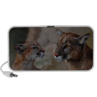 Mountain lions in love notebook speakers