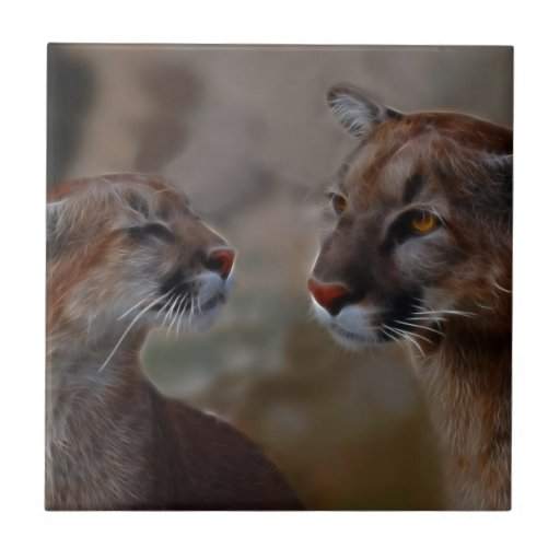 Mountain lions in love tiles