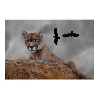 Mountain lions watch out poster