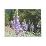 Mountain Lupins at Yosemite Doormat
