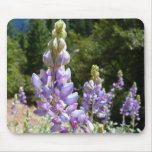 Mountain Lupins at Yosemite Mouse Pad