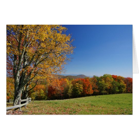Mountain Meadow Note Card