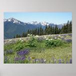 Mountain Meadow Poster Print