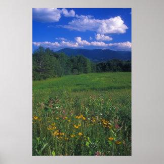 Mountain Meadow Preserve Mount Greylock Poster