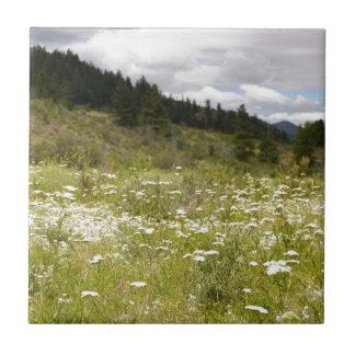Mountain Meadow Tiles