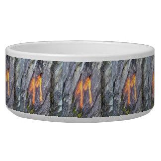 Mountain number 11 pet water bowl