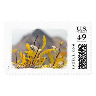 Mountain of Leaves; Mailing Necessities Postage Stamp
