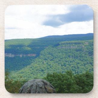 Mountain Overlook Coaster