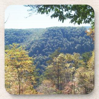 Mountain Overlook Drink Coaster