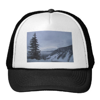 Mountain Overlook With Pine Tree, Mesh Hat