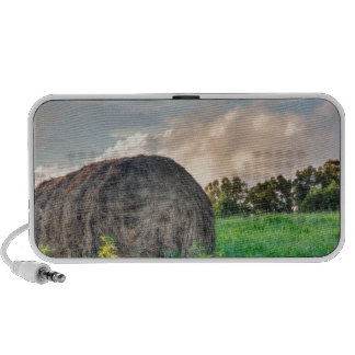 Mountain pasture hay bale mp3 speaker