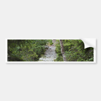 Mountain Path Bumper Sticker
