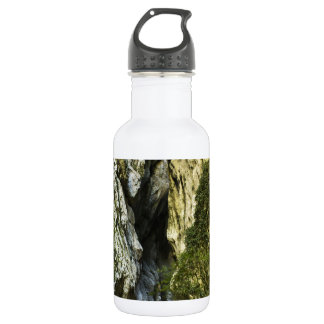 MOUNTAIN PATH STAINLESS STEEL WATER BOTTLE