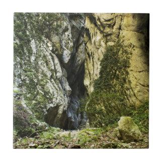 MOUNTAIN PATH CERAMIC TILE