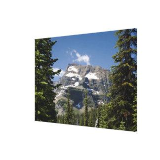 Mountain Peak Between Trees Under A Blue Sky Canvas Print