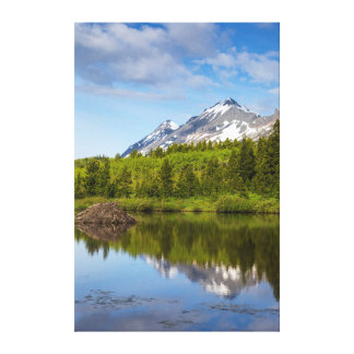Mountain Peaks Reflect Into A Beaver Pond Canvas Print