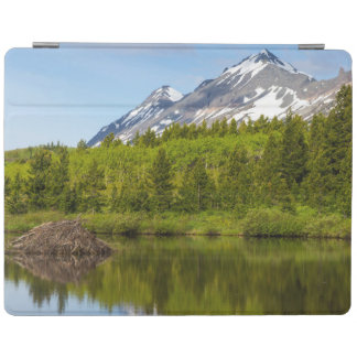 Mountain Peaks Reflect Into A Beaver Pond iPad Smart Cover