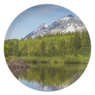 Mountain Peaks Reflect Into A Beaver Pond Party Plate